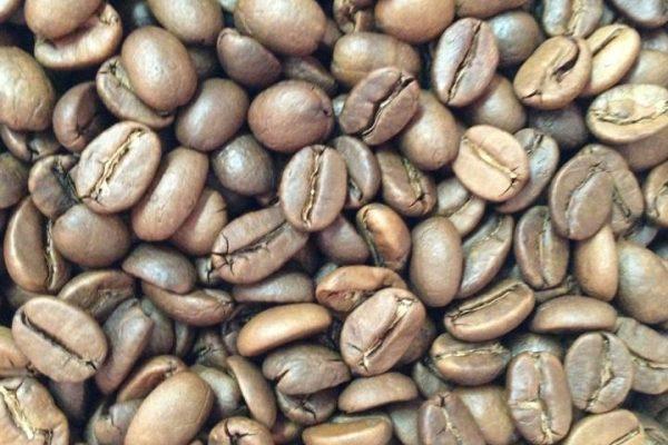 Lam Yeo Beans